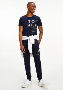 Tommy Hilfiger MW0MW20149DW5 vīriešu T-krekls, zils